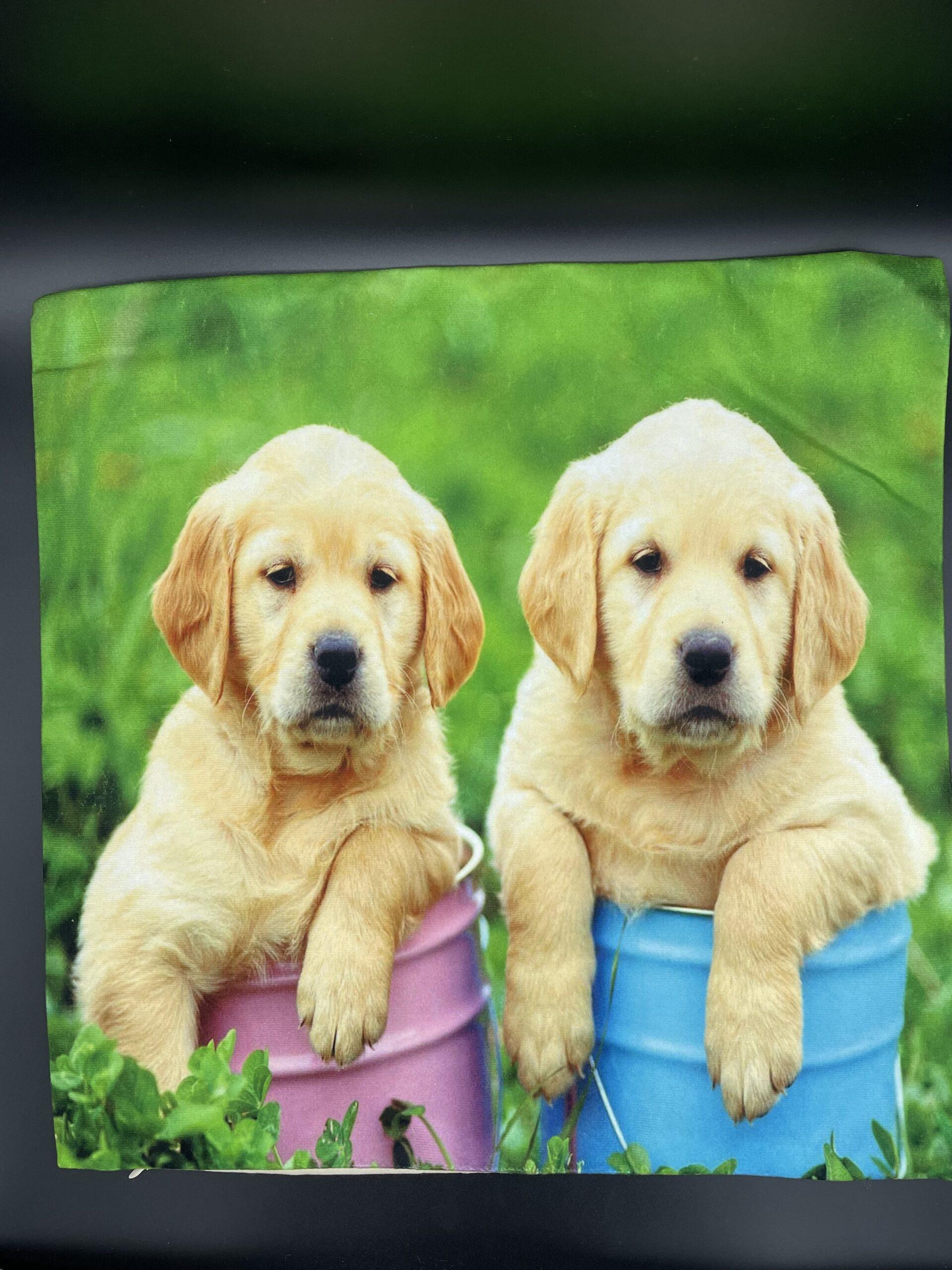 Federa cuscino-cuccioli