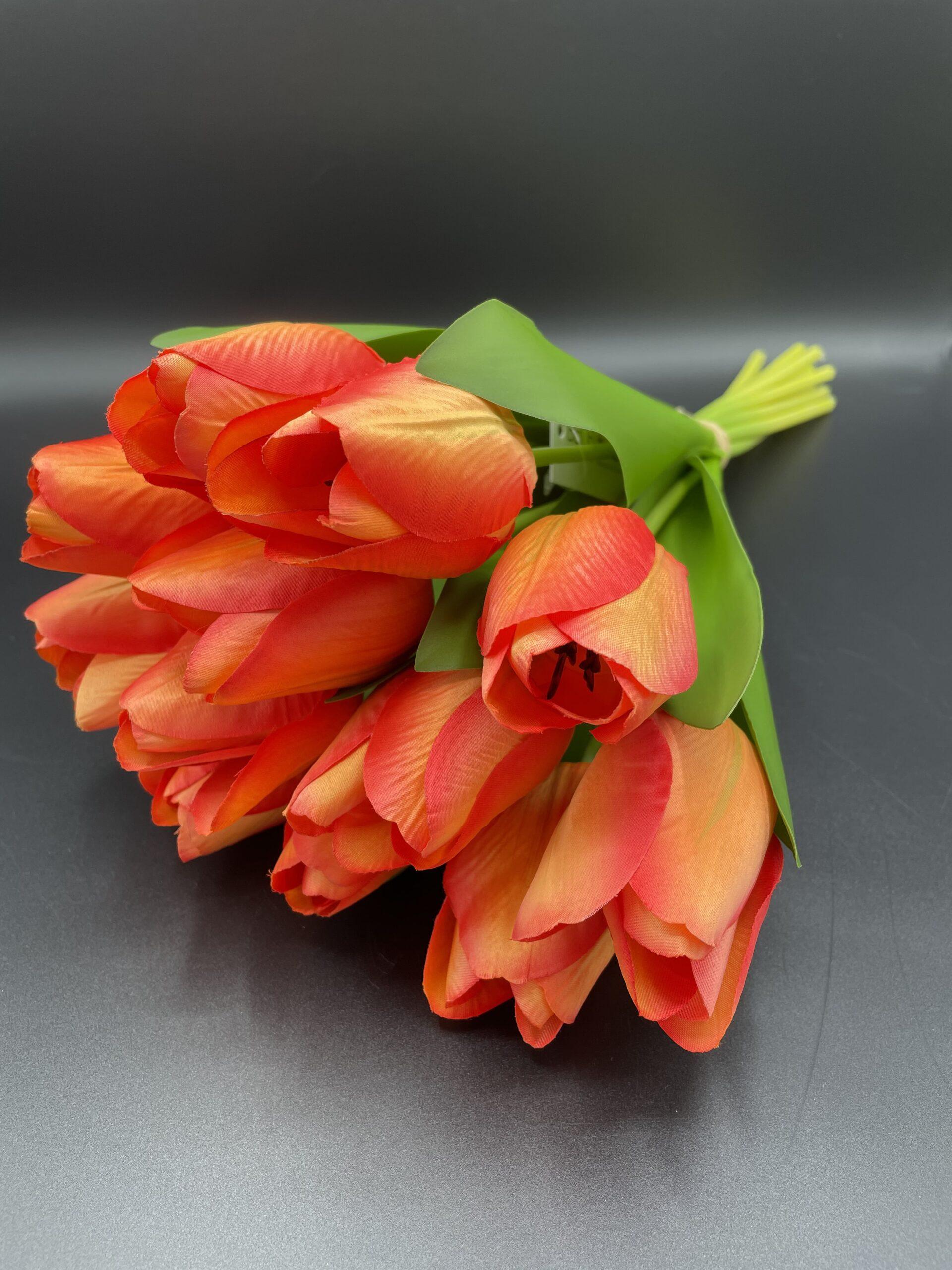 Mazzo 12 tulipani rosso