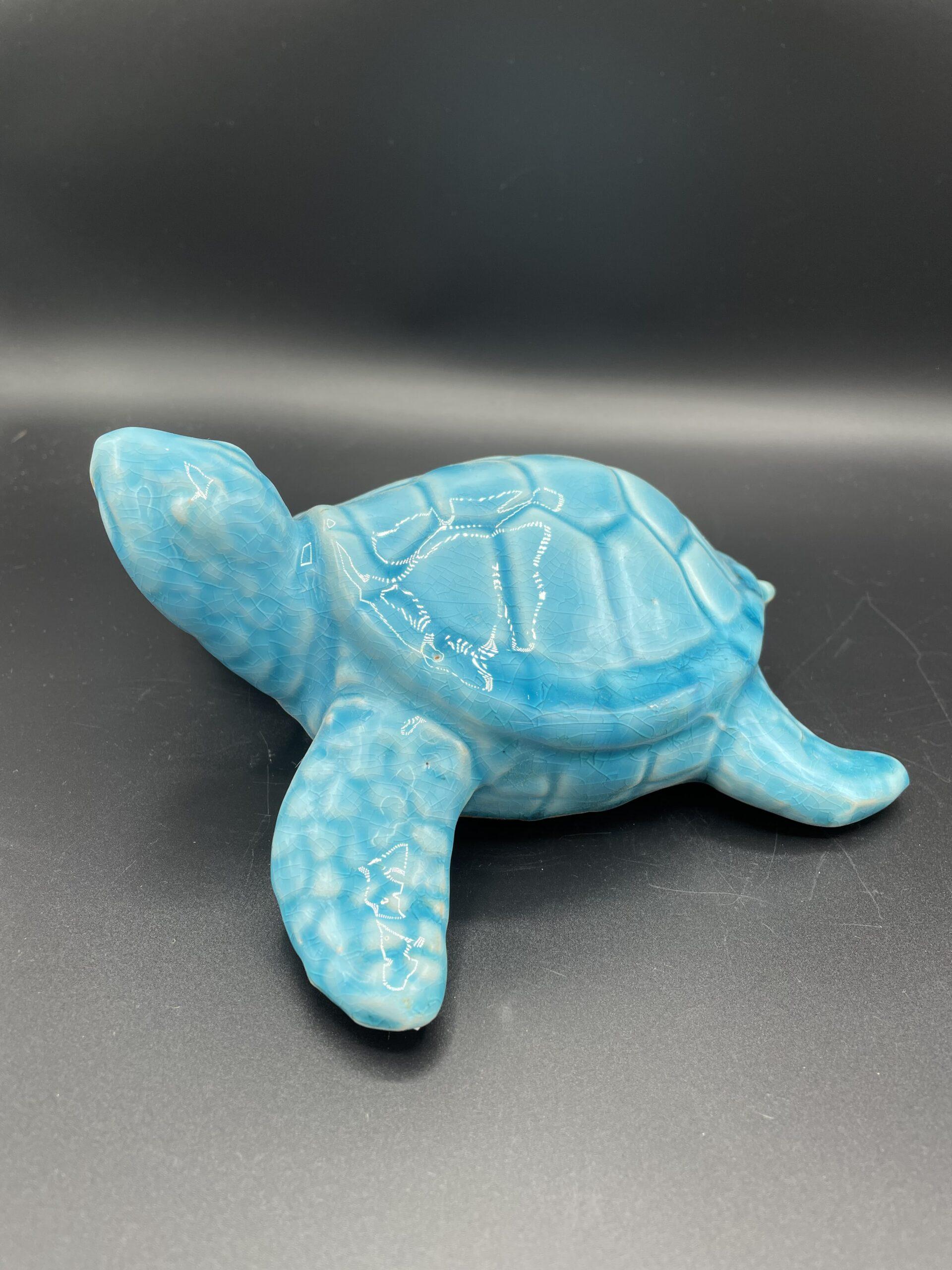 Tartaruga azzurra
